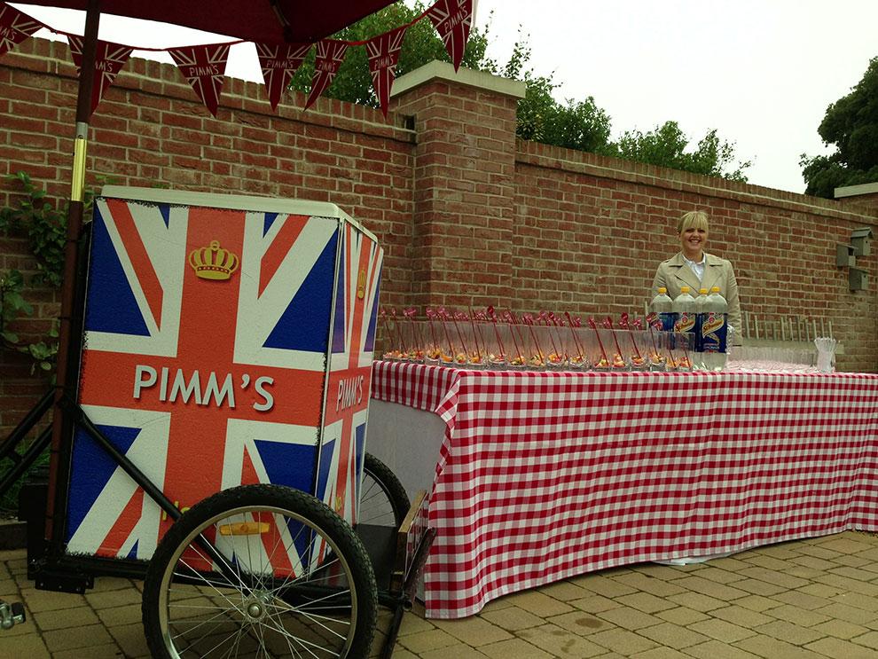 Pims-1